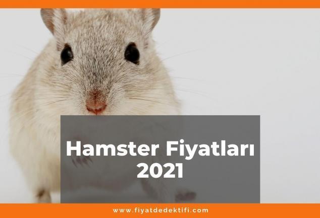 Hamster Fiyatları 2021, Güncel Fiyatlar 2021 | Fiyat Dedektifi - Güncel Canlı Zamlı Fiyatlar 2021